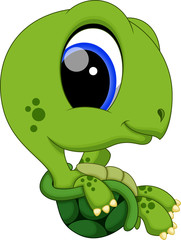 Cute super turtle cartoon