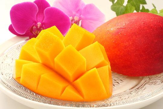 マンゴー カットフルーツ