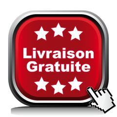 LIVRAISON GRATUITE ICON