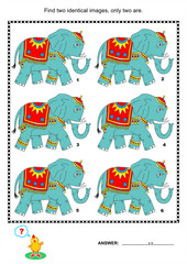 Visual puzzle - find two identical pictures of elephants