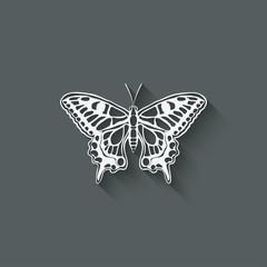 white butterfly machaon