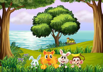Animals at the forest