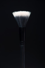 Professional black make-up brush