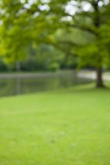 Papiers peints Jardin Green park with little lake