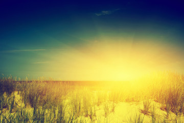 Calm ocean and sunny beach with dunes and green grass. Vintage