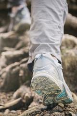 Hiking or Mountaineering