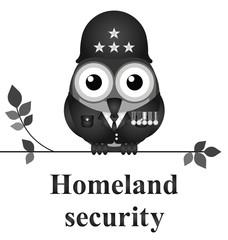 American homeland security