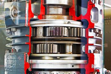 The mechanism of motor gear under glass