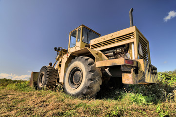 Big yellow old loader standing abandoned in a grass