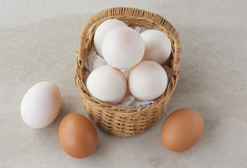 Duck eggs and Chicken eggs in Basket