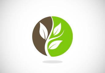 tree leaf botany vector logo