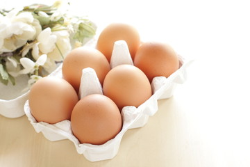 freshness brown egg in carton