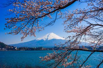 Fujisan , Mount Fuji view from Kawaguchiko lake, Japan with cher