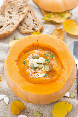 spicy vegetable cream soup in a pumpkin and bread, top view