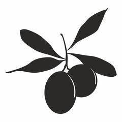 Vector illustration of olives