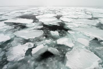 Drift Ice of Okhotsk Sea (オホーツク海流氷) in Shiretoko Hokkaido, Japan