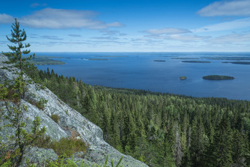 Wall Mural - View from the Koli to lake Pielinen