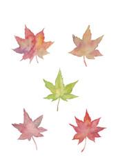 紅葉の水彩イラスト