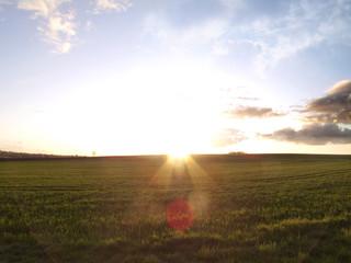 Sun shining on field