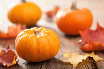 autumn halloween pumpkins on wooden background