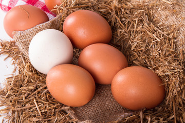 Organic Eggs in Nest