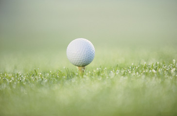 Detail view of a teed golf ball in the grass