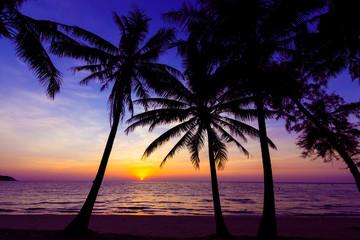 sunset on the beach.  Sunset over the tropical beach