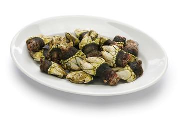percebes, boiled goose barnacle, spanish tapas cuisine