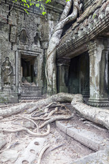 Mauern und Säulen im Tempel Ta Prohm in Angkor