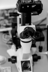 Microscope with laboratory background