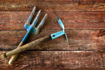Garden tools on a wooden plank floor