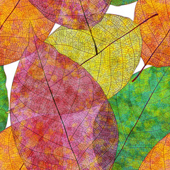 Seamless pattern, autumn leaves. Vector, EPS10