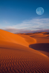 Canvas Prints Desert moon on desert