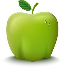 Fresh Green Apple Illustration