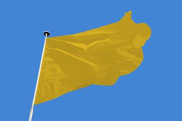 Wall Mural - Yellow Flag