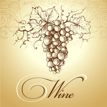 Wine label with grapes . bunch of grapes