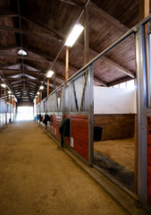 Stall Center Path Horse Paddack Equestrian Stable