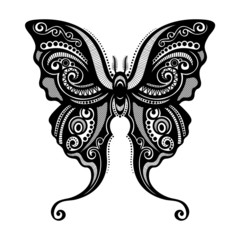 Vector Beautiful Butterfly, Exotic Insect. Patterned design, Tat
