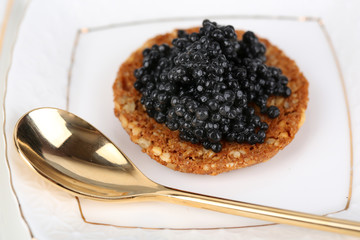 Black caviar on crispy bread on plate closeup