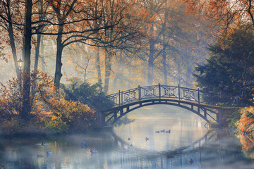 Foto op Canvas Bruggen Autumn - Old bridge in autumn misty park