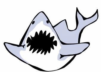 doodle shark