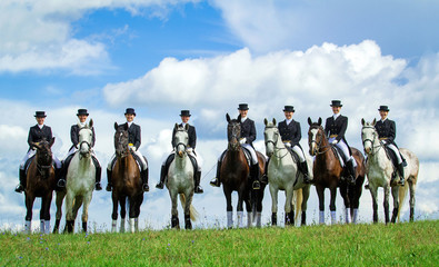 Group of eight riders on the hill. Equestrian sport - dressage. Wall mural
