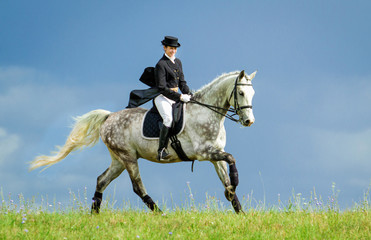 Woman riding a horse on the hill. Equestrian sport - dressage. Wall mural