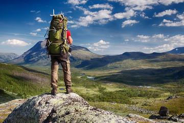 Hiker in the Wilderness of Sweden Wall mural