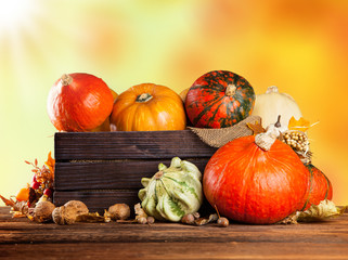 Autumn colored pumpkins in wooden box