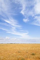 Photo Stands Night blue Tsavo East Landscape in Kenya