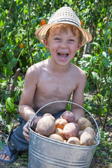 Boy holding bucket of potatoes