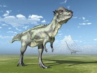 The Dinosaurs Pachycephalosaurus and Mamenchisaurus