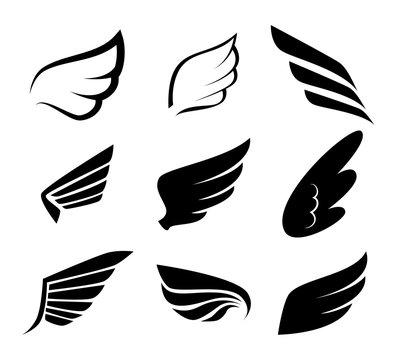 Wings design