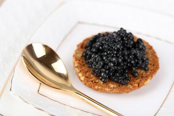 Black caviar on crispy bread on plate closeup